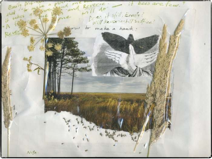 nature-journal-sample2